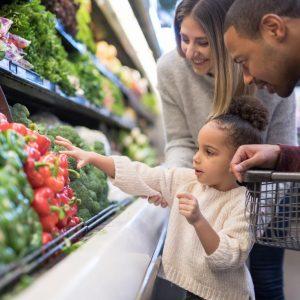 ¿Cuáles son los 6 nutrientes esenciales?