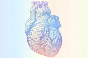 Cómo un ácido graso omega-6 puede mantener a raya la enfermedad cardíaca