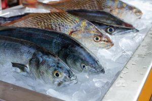 Por qué el pescado puede volverse más tóxico que nunca