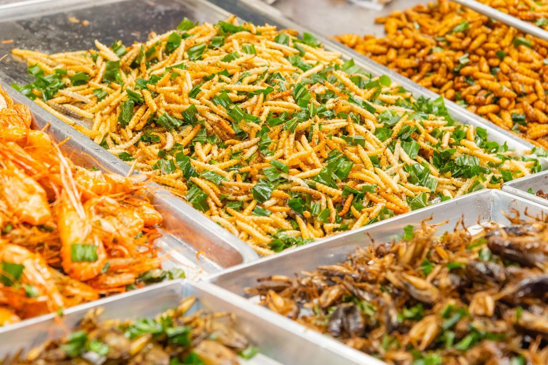 Los efectos en la salud de comer gusanos