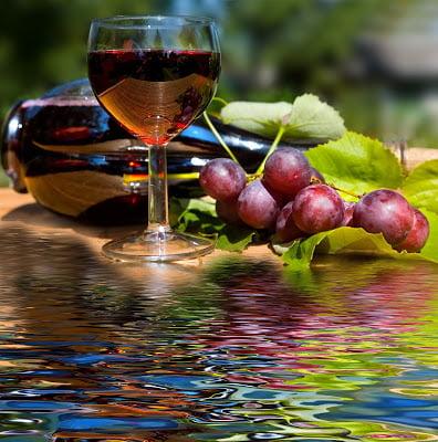 POR FAVOR, ¿ UN VINO SIN ALCOHOL?