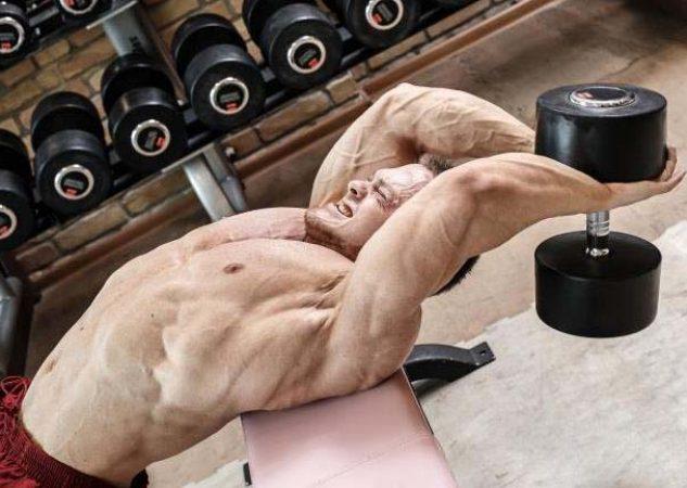 ¡El jersey para los pectorales y los músculos de la espalda!