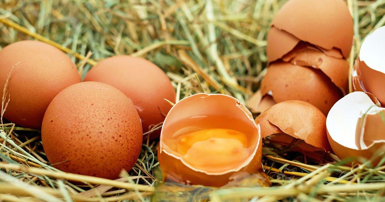 ¿Huevos enteros o claras de huevo?