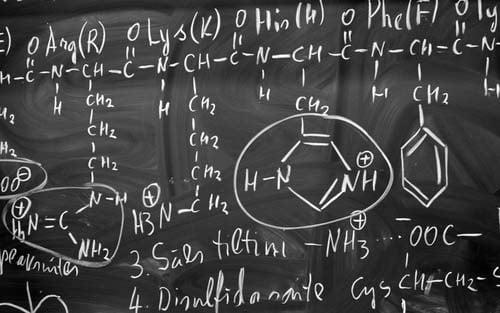 Les acides aminés: c%image_alt%27est quoi?